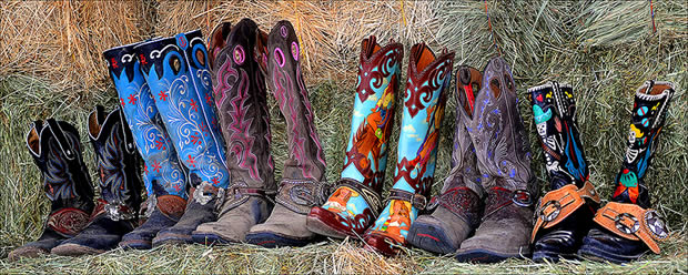 Cowgirl's Closet 308